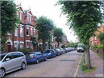 TQ5839 : Mountfield Gardens, Tunbridge Wells by Chris Whippet