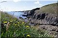 SM7623 : Coastline from Porth y Rhaw to Ramsey Island by Alan Hughes