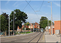 SK5236 : Tram arriving at Beeston Centre by John Sutton