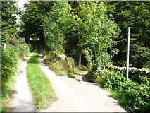 SK2376 : Route down through the woods to Stoney Middleton by Christine Johnstone