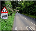 SZ5589 : Oncoming vehicles in middle of road warning sign, Havenstreet by Jaggery