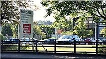 """J4073 : """"For sale"""" sign, Rosepark House, Belfast (September 2015) by Albert Bridge"""