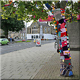 NT4728 : A colourful tree in Selkirk High Street by Walter Baxter