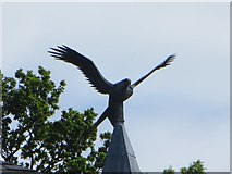 SO0660 : Kite on the Hall by Bill Nicholls