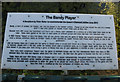 TL3874 : The Bandy Player board by Hugh Venables