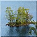 NH4356 : The Crannog on Loch Achilty by Julian Paren
