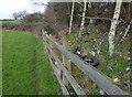 SK5302 : Rubbish strewn embankment by Mat Fascione