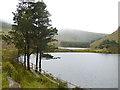 Q5907 : Lough Carrun by Oliver Dixon