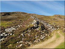 NO1172 : Post-glacial debris flow (looking uphill) by Rob Burke