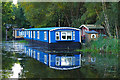 SU9657 : Houseboats on the Basingstoke Canal by Alan Hunt