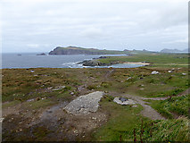 Q3102 : View north from the road at Clogher Head by Oliver Dixon