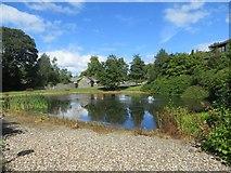 SO0660 : County Hall Pond by Bill Nicholls