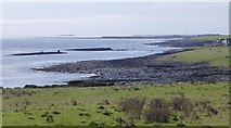 NU2521 : Coastal rocks looking south from Dunstanburgh Castle by Russel Wills
