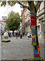 SO8318 : Bombed tree in Eastgate Street by Neil Owen