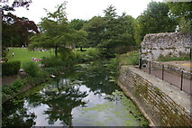 TL8564 : Bury St Edmunds: looking down the River Lark at the Abbey Gardens by Christopher Hilton