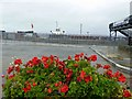 SZ5992 : Behind the fence is the Hovercraft ferry to Southsea by Steve  Fareham