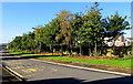 SO2605 : Tree-lined Lasgarn View, Varteg by Jaggery