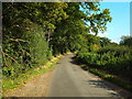 TL0201 : Country lane near Flaunden by Malc McDonald