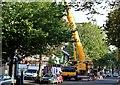 J3373 : Crane, Dublin Road, Belfast (September 2015) by Albert Bridge