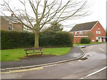 SP2871 : A sliver of amenity open space, Regency Drive off Queen's Road, Kenilworth by Robin Stott