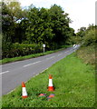 SO6032 : B4224 traffic cones and speed limit signs in rural south Herefordshire by Jaggery