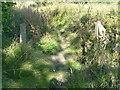 SE1623 : Footbridge on Brighouse FP83, Clifton by Humphrey Bolton
