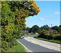 SP1795 : A446 Lichfield Road near the Belfry by Mat Fascione