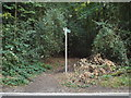 TL0401 : Public footpath on Chipperfield Common by Malc McDonald