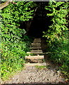 SO2603 : Wooden steps descending from Incline Road, Abersychan by Jaggery