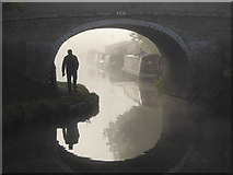 SJ8512 : Foggy morning at Wheaton Aston, Staffordshire by Roger  Kidd