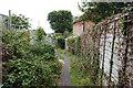 SZ5492 : Coastal path towards Wootton Bridge by Ian S