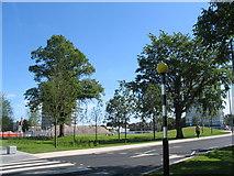 SP3378 : Warwick Road, Greyfriars Green by E Gammie