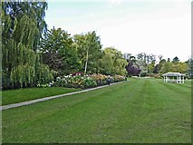 SE2955 : Dahlia bed in Harrogate's Valley Gardens by Steve  Fareham
