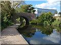 SP1391 : Berwood Bridge crossing the Birmingham & Fazeley Canal by Mat Fascione