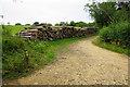 SP0325 : Pile of logs near Waterhatch by Bill Boaden
