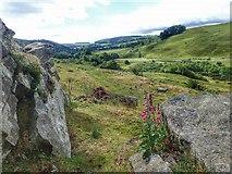 NZ0901 : View Down Marske Beck by Mick Garratt