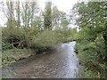 SO3381 : River Clun by Richard Webb