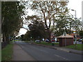 TL1304 : Tippendell Lane, Chiswell Green by Malc McDonald