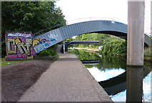 SP0990 : Pipe bridge crossing the Tame Valley Canal by Mat Fascione