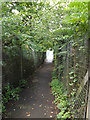 TQ6193 : Footpath to Princes Way by Adrian Cable
