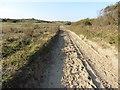 SS4633 : Military road through Braunton Burrows by Roger Cornfoot