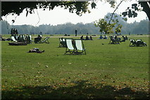 TQ2780 : View of deckchairs and people in the sun in Hyde Park by Robert Lamb