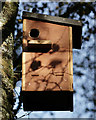 SD1399 : Squirrel Nest Box by Peter Trimming