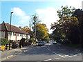 TQ3572 : Bampton Road, Forest Hill by Malc McDonald
