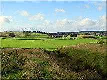 NY6565 : Vallum ditch east of Gilsland by Andrew Curtis