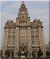 SJ3390 : Royal Liver Building, Liverpool by Oliver Mills