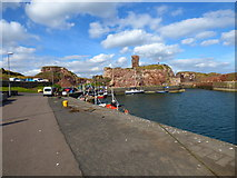 NT6779 : Dunbar:  Remains of castle by Dr Neil Clifton