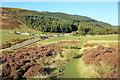 SJ1660 : Offa's Dyke Path at Bwlch Penbarras by Jeff Buck