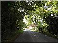 TM1957 : B1077 Helmingham Road, Helmingham by Adrian Cable