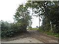 SU9793 : Track off Bottrells Lane, Chalfont St Giles by David Howard